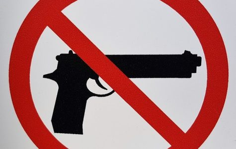 What exactly could resolve this problem of school shootings?