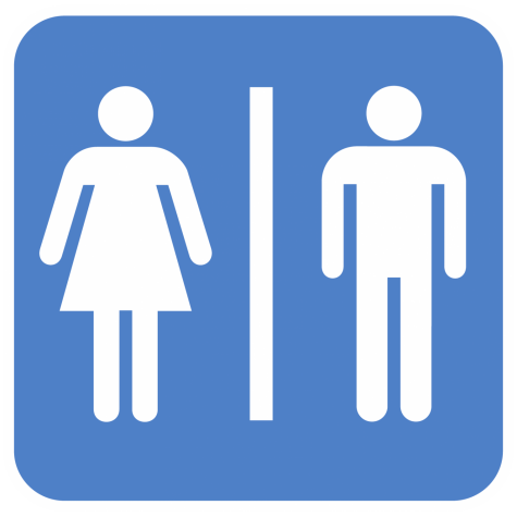 An Essay on Bathrooms and Disability Access