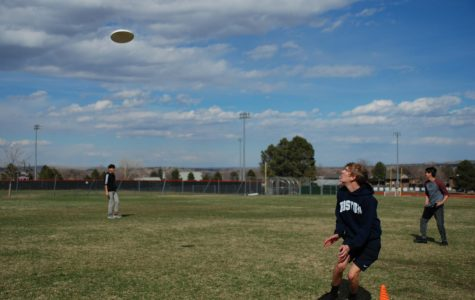 A Truly Ultimate Sport: Taking a Look at Fairview's Ultimate Frisbee Team