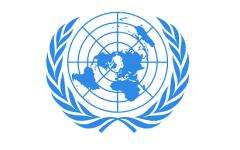 Model UN Online Conference